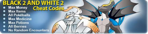 Pokemon Black and White 2 codes